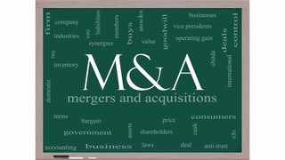 Michigan Accounting Firms Merge