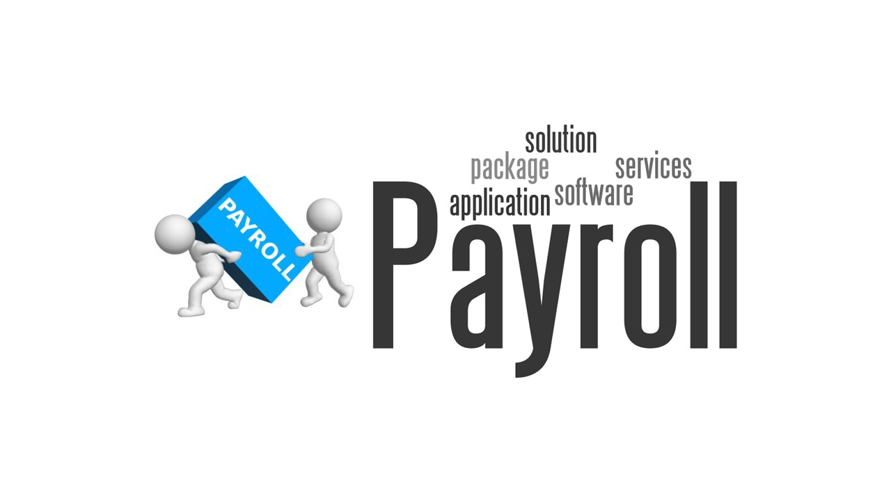 2015 review of professional payroll systems