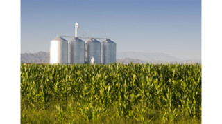 How to Turn Agricultural Clients into Agribusiness Clients
