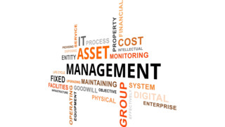 2017 Reviews of Asset Management Systems