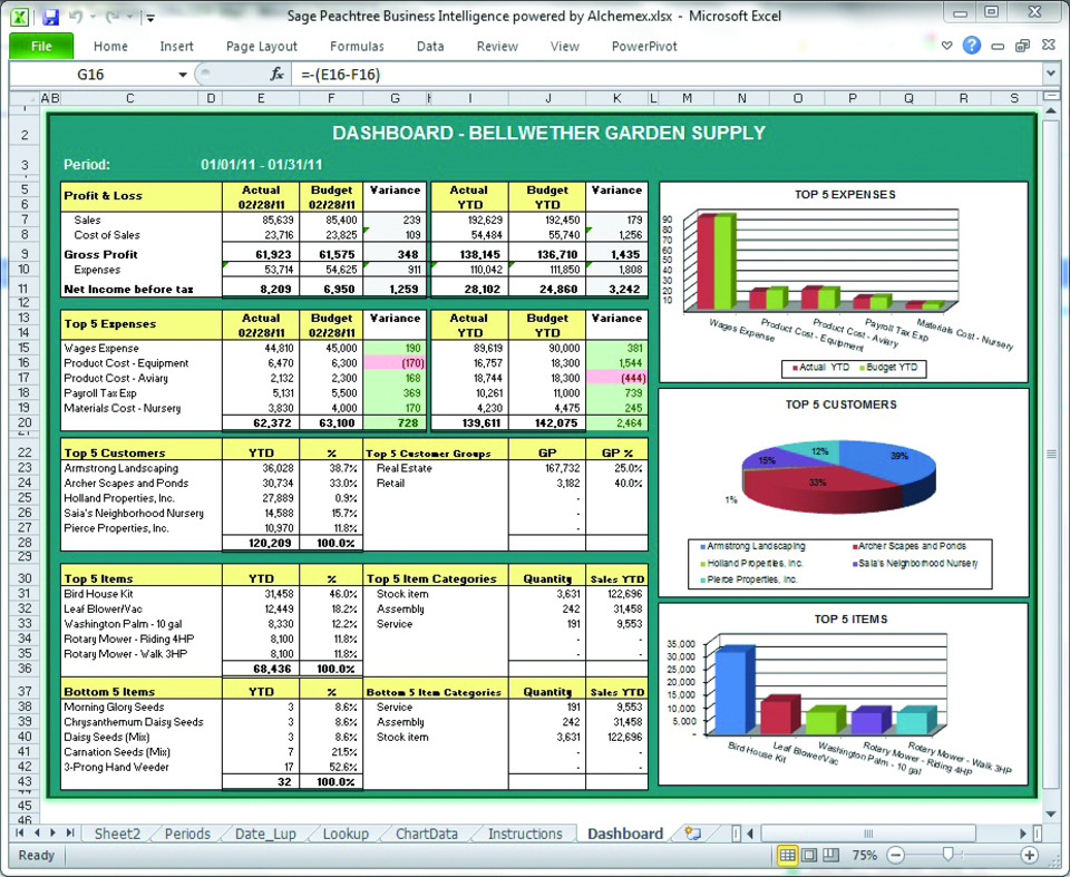 Strategic Performance Management with Sage Peachtree Business