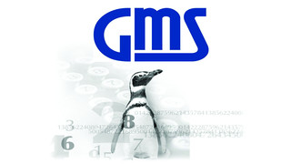 GMS Revolving Loan Servicing System