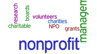 2014 Review of Accounting Systems for Nonprofits