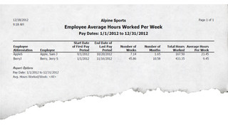 Red Wing Software Announces Employee Tracking Tool