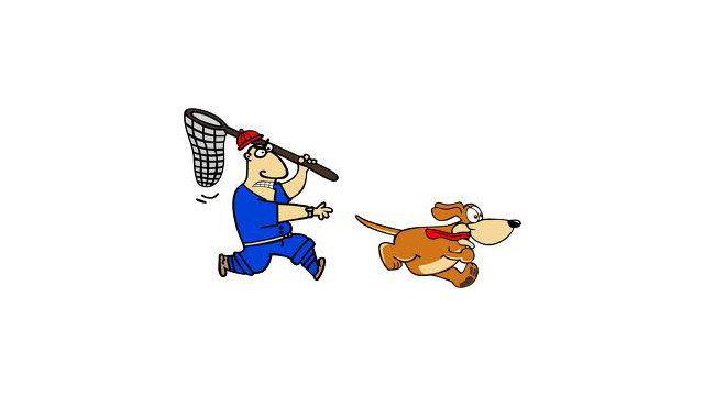 dog-catcher1.jpg