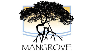 Mangrove's Workforce Empowerment