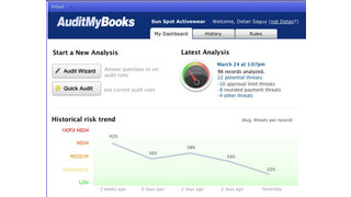 AuditMyBooks Analyzer