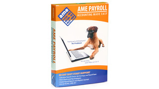 AME Small Business Payroll