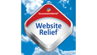 2011 Review of AccountantsWorld — Website Relief