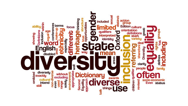 Diversity20Blog20Wordle1.jpg