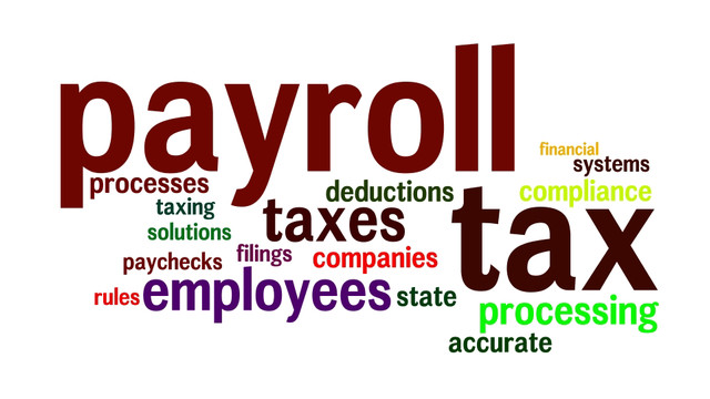 2014 Review of Professional Payroll Systems